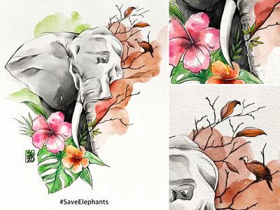 Save Elephants - Endangered Species digital watercolor watercolour elodrawz ipadpro procreate photoshop wacom cintiq wacom illustration elocaricatures elo