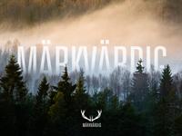 Markvardig