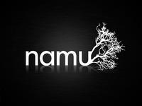 Dribbble Namu Logo