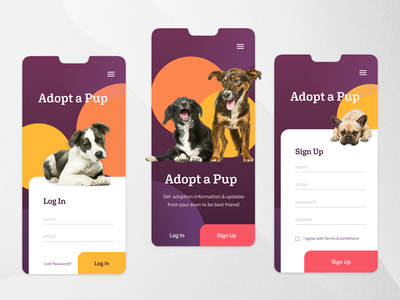 Adopt a Pup mobile adoption modern affinitydesigner figma login colorful dailyui concept dog design ui app
