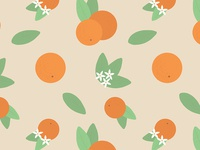 Vintage Florida Oranges Pattern - Detail
