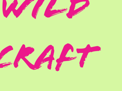 Wild craft logo pink green typography desinger creator creative art craft nature wild identity brand logo design logo