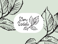 Elm Social