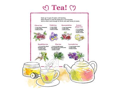 Tea! <3 aquarelle photoshop herbs pecipe tea watercolor colourful illustration art