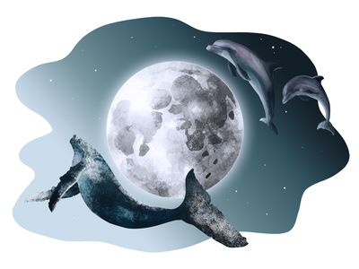 July 23 - World Whale and Dolphin Day night gradient ecology eco july 23 print design moon dolphin whale digital illustration art print