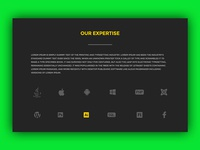 UI_001_Our Expertise