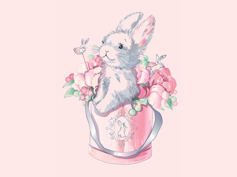 Bunny in box