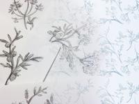 Gin Botanicals for Tile Background