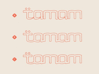 Tamam Logotype Options