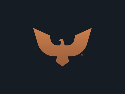 Shaheen Symbol brand identity wings geometric solid logo design bird simple symbol luxury logo effendy gold identity minimal eagle predator animal branding shaheen falcon