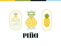 PINA Logo Concepts
