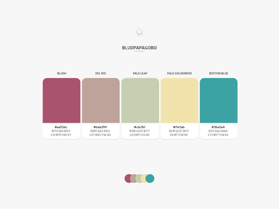 Color Combo - BLUDPAPAGOBO product design web design palette color combo color palette design theme colors