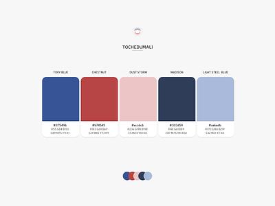 Color Combo - TOCHEDUMALI flat colour colorscheme design color combo web design theme product design palette color palette colors