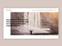 Consultancy company website
