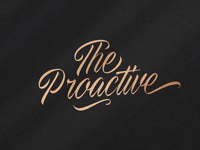 The Proactive Script Font elegant fashion wedding hand-written handlettering script typeface font download