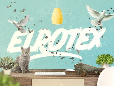 Elrotex Brush Font download typeface brush font pixelbuddha