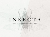 Freebie: Insecta Vector Illustrations Set