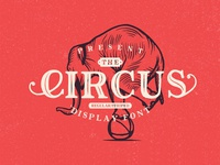Freebie: The Circus Display Font
