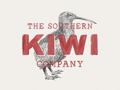 36 Engraved Bird Illustrations vectors vector illustrations bird kiwi clipart birds logo pixelbuddha download