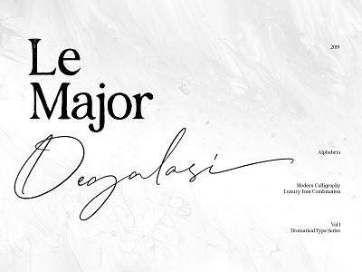 Degalasi Script Font font stylish feminine script modern hand lettered handwritten elegant download typeface serif duo ligature