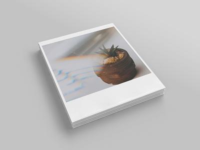 Realistic Polaroid Mockup Set vintage photo polaroid mockups mockup showcase pixelbuddha photograhy download psd