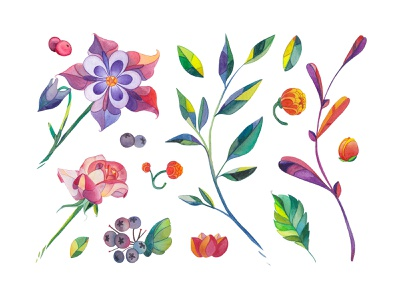 Lunar Flower Watercolor Kit watercolor clipart bundle illustraion hand draw colors colorful art flowers leaves pixelbuddha download