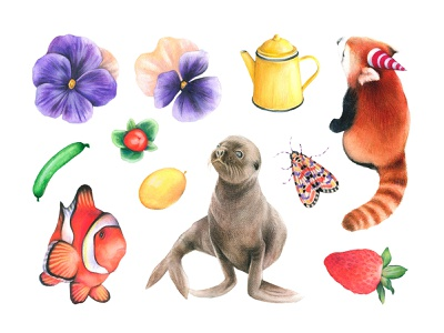 Cool Kids Watercolor Set children vector png kids flowers animals pixelbuddha manuka graphic download clipart illustration watercolor