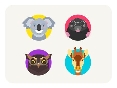 Colorful Animals