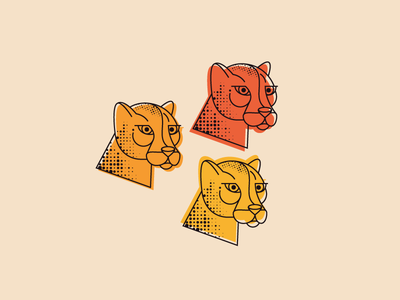 💭 Where? clean style warm logo gepard leopard cat app icon flat vector character illustration