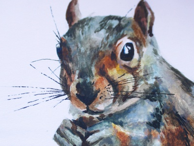 Grey squirrel detail wild animals wildlife squirrel logo squirrel grey fur texture detail handpainted handdrawn watercolour painting watercolour illustration watercolor design colour creativity nature photography illustration graphicdesign