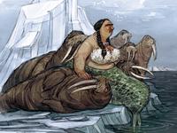 The Arctic Walrus Whisperer