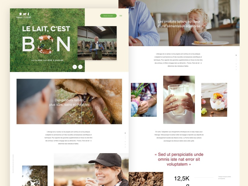 Promotional website for French Milk organisation