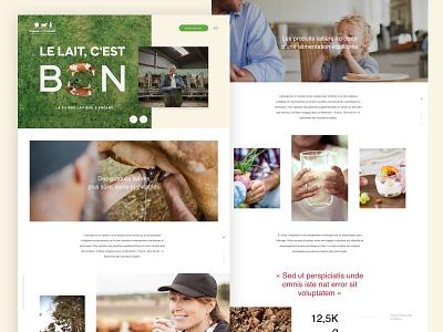 Promotional website for French Milk organisation artdirector webdesign redesign
