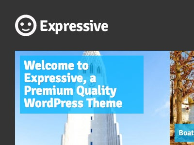 Expressive wordpress photo logo