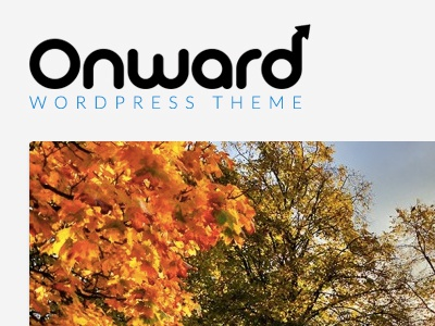Onward wordpress theme photography logo