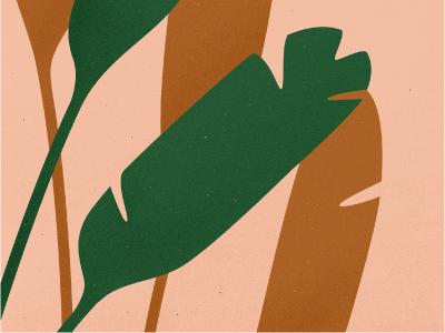 Foliage shadows foliage plant texture vector leaf