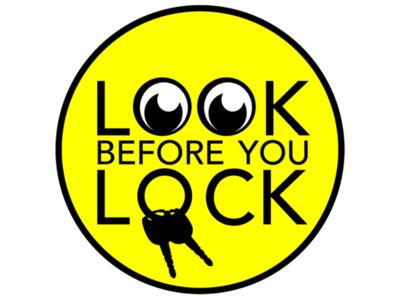 Look before you Lock logo