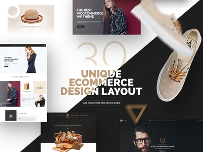Nitro - Multiplpopurse eCommerce Wp theme