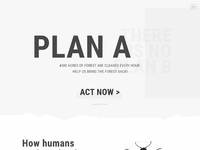 Plana campaign wireframe