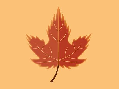Day 19 - Maple Leaf mapleleaf maple leaf fall autumn 100daychallenge design vector illustration
