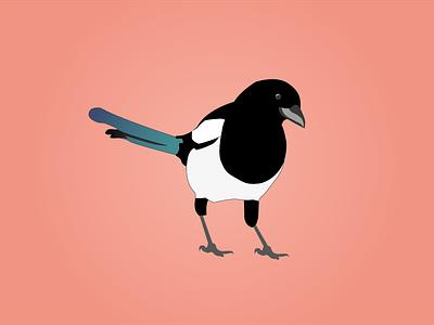 Day 23 - Magpie magpie 100daychallenge design vector illustration