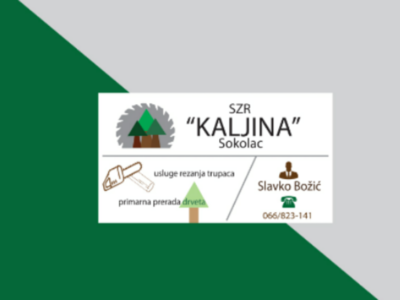 Business card business brenta machine processing process primary job chainsaw forest-boulder company logo contact brown icons lines gray green saw wood business card