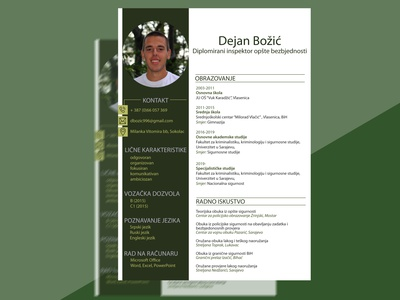 CV image lines work education experience job page layout resume design cv light dark green round rectangular design