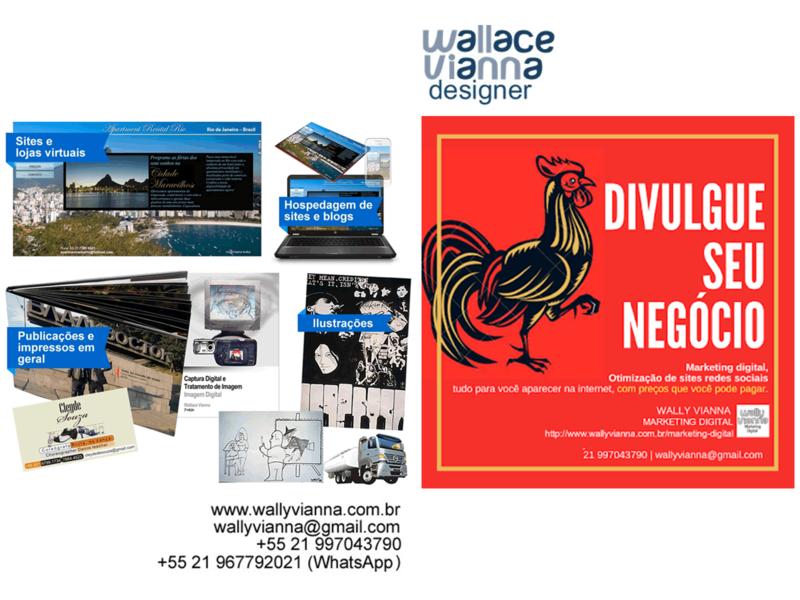 wallace vianna designer freelancer autonomo rio janeiro rj website animation web logo illustration web design graphic design marketing illustrator designs designer design