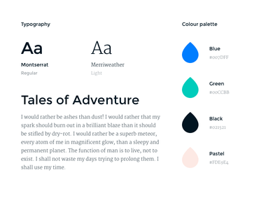 Visual language colour palette brand guidelines brand guide brand design brand book style guide fonts typeface typography guidelines identity