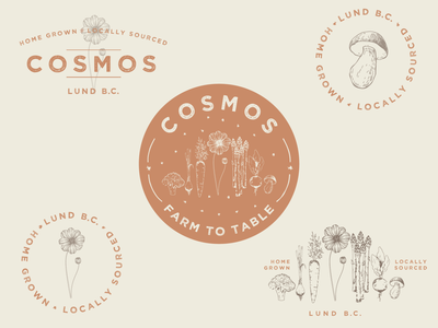 Cosmos - Farm To Table space stars pnw mushroom burnt orange natural desert home grown farm to table floral vegetables antique design vintage illustration branding cosmos logo