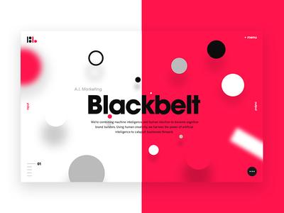 Blackbelt.io - Home