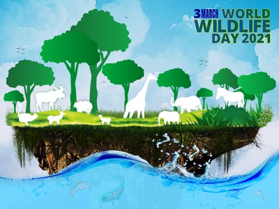 World Wildlife Day 2021 safari forest nature environment green leaves wildlife illustration wildlife vector worldwide world jungle ocean adobe illustrator adobe photoshop artwork animals animal day world animal day