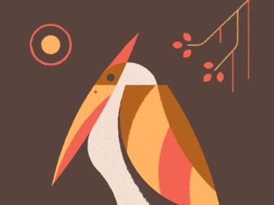 Little birdo!