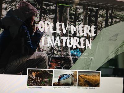 Campaign site display font font website campaign landingpage forest woods nature